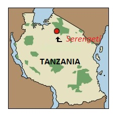 Serengeti,Tanzania
