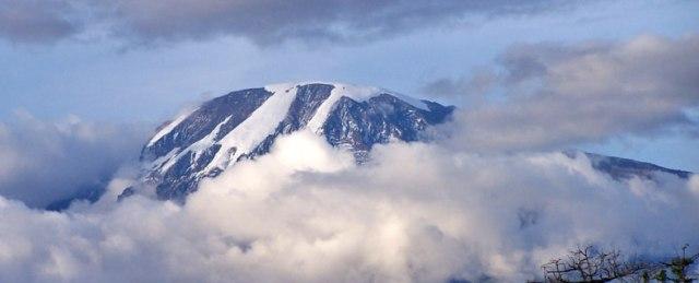20372_kilimanjaro
